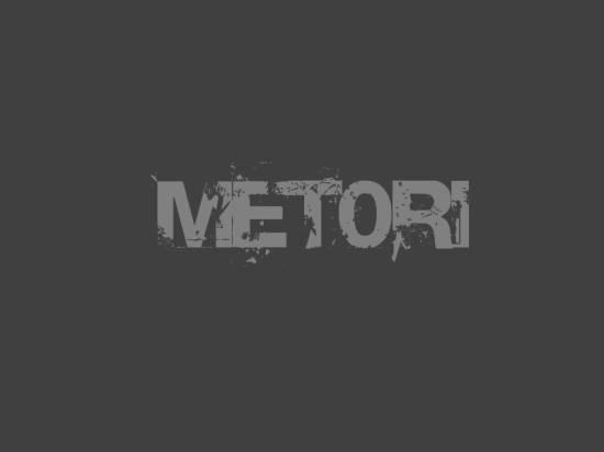 скачать чит metori для steam